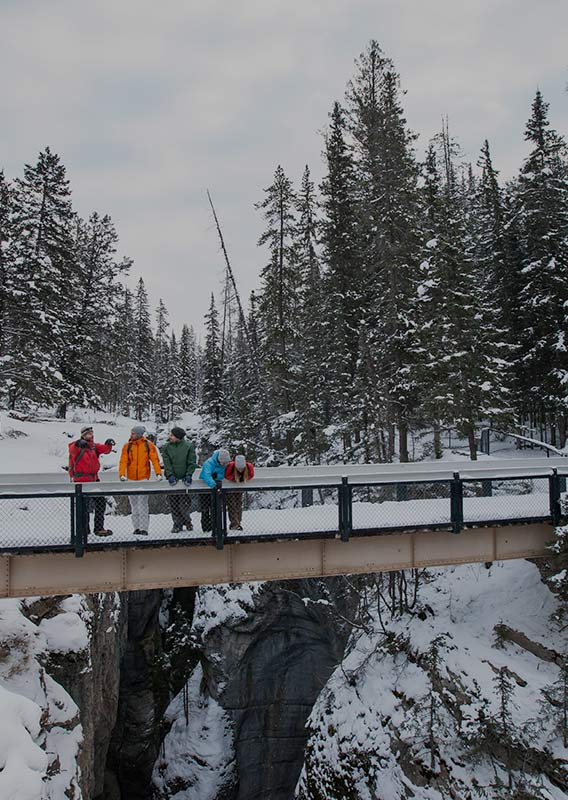 A group of people stand on a snow-covered bridge above a deep canyon
