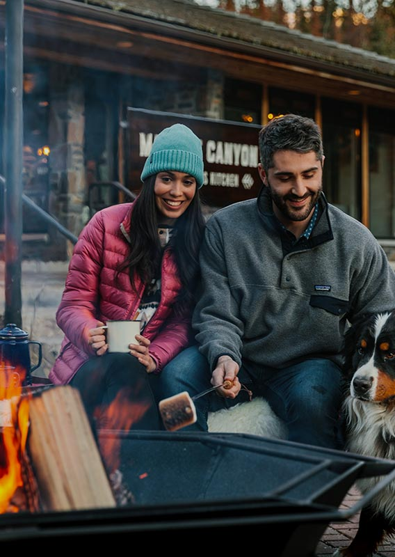 Two people and a dog sit at a campfire roasting marshmallows