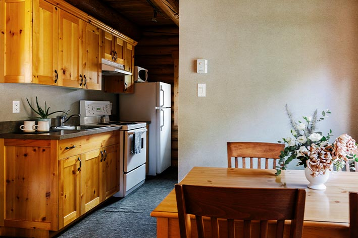 A kitchen in a wooden cabin