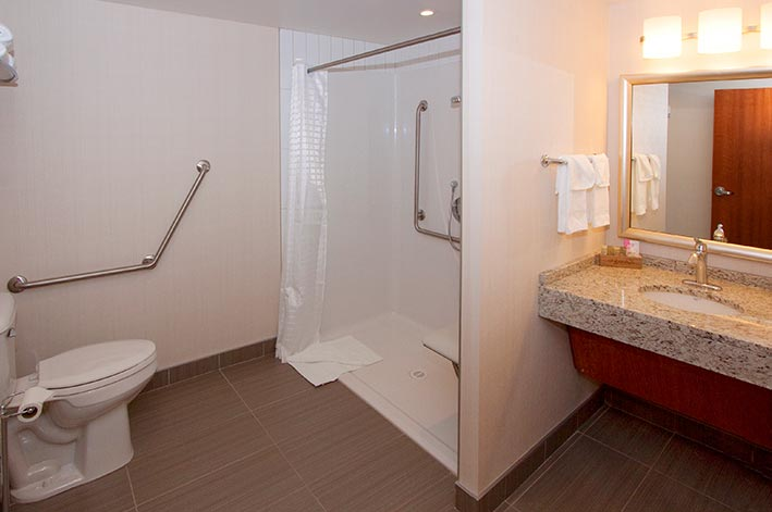 A bathroom with wheelchair accessible shower and toilet