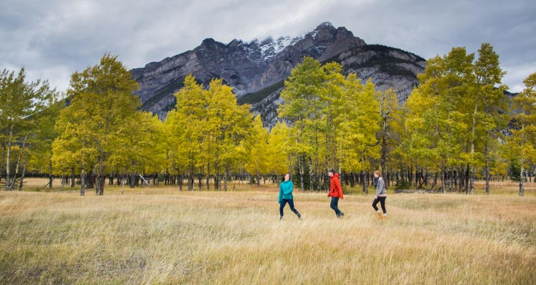 Three hikers walk in a meadow below mountains.