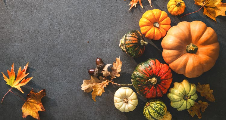 An above view of multi-coloured gourds and leaves in autumn colours.