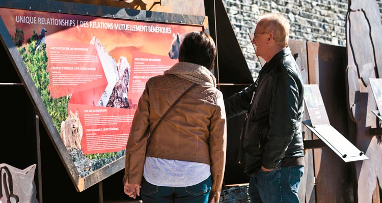 Two people read a large information display about animals and ecology