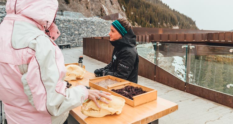 A Columbia Icefield interpreter shows biological artifacts with visitors.