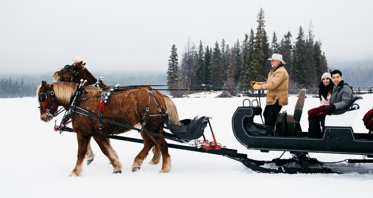 Two people and a sleigh driver ride a horse-drawn sleigh along a snowy lake shore.