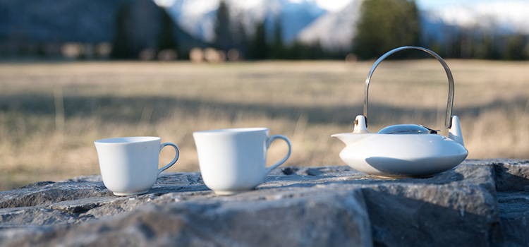 a white teapot and two white tea cups sit on a rock outside