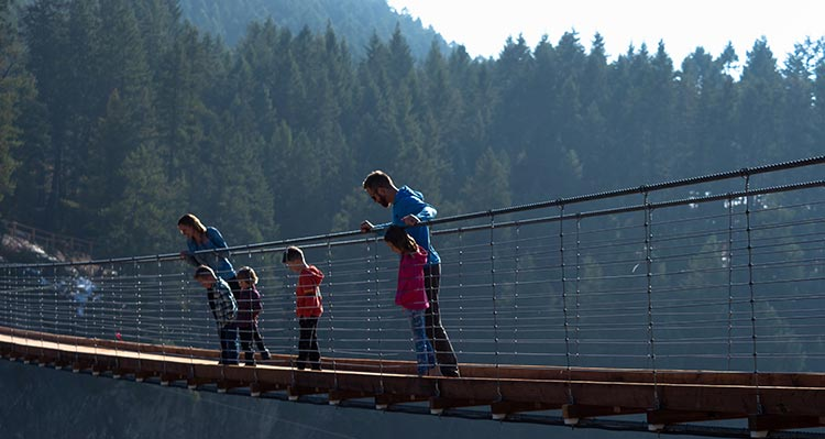 A family stands on a narrow footbridge looking down into a forested valley.