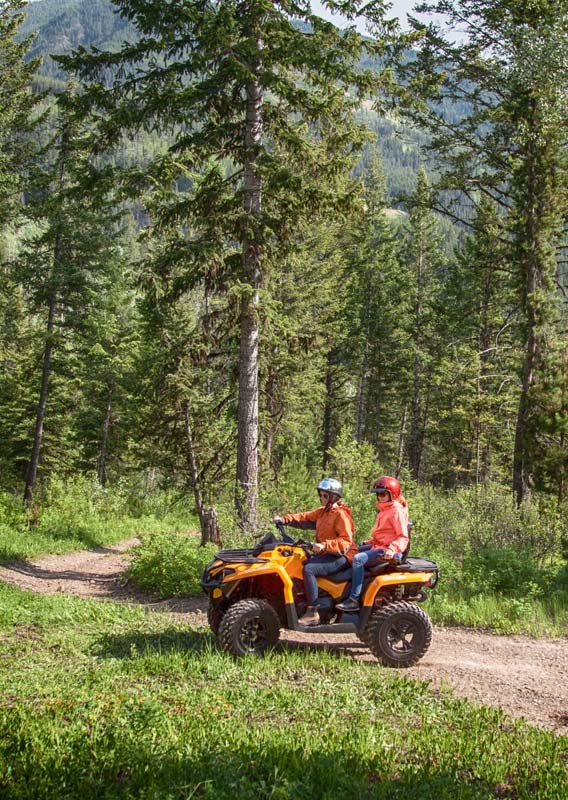 Two people on an all-terrain vehicle on a dirt path below conifer trees