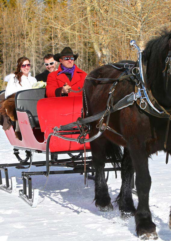 Private sleigh ride in Banff National Park