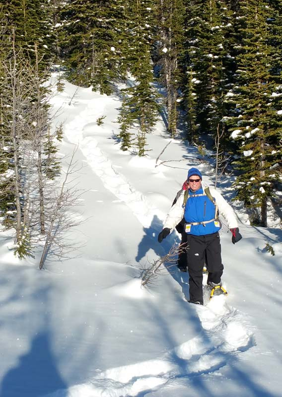 Two people walk through a snow-covered forest in snowshoes.